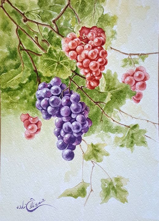 Grapes - Shohreh's world