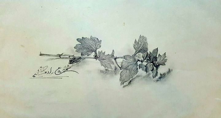 The dance of leaves - Shohreh's world