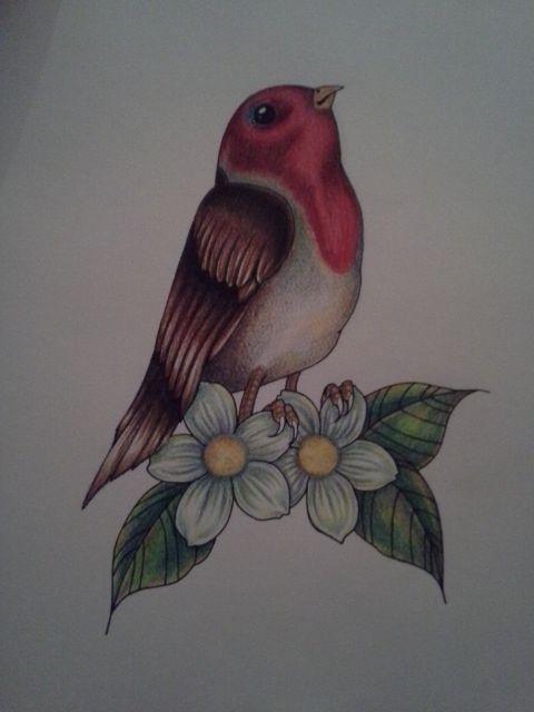 Bird And Flower Tattoo Design - Devon Willis Tattoo Designs
