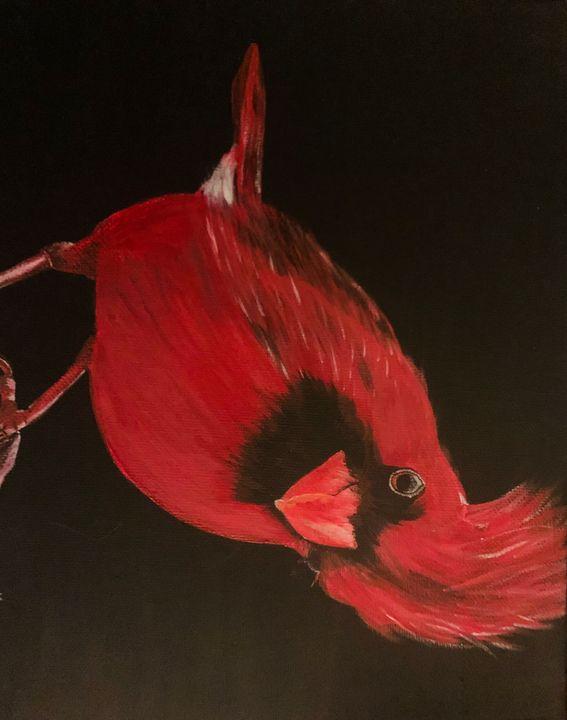Cardinal - K Fane Paints