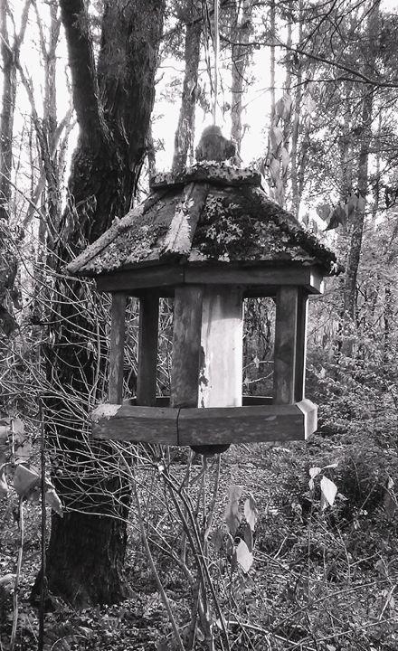 Birdhouse - Anita Snoody Art