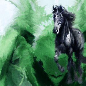 Bucephalus, The Conqueror