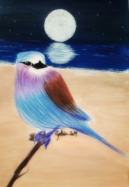 Dreambird - Cynthia