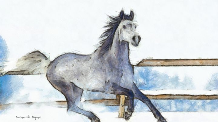 Arabian Horse And Snow - Leonardo Digenio