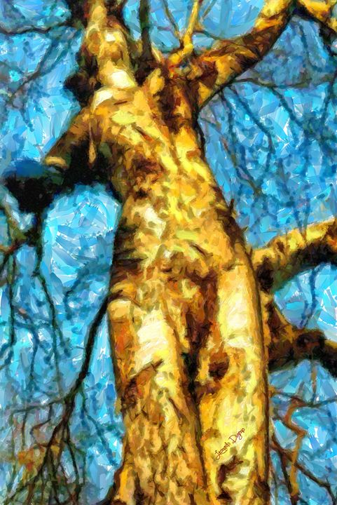The Tree That Wanted To Be A Woman - Leonardo Digenio