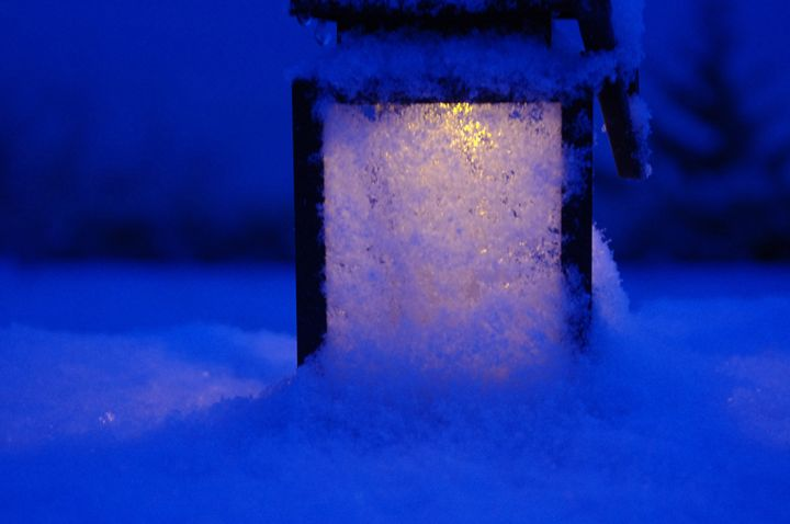 Light In Snow - FotoFreedom