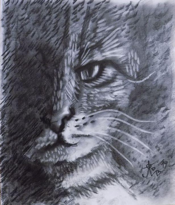 Cat - JelenaBardakart