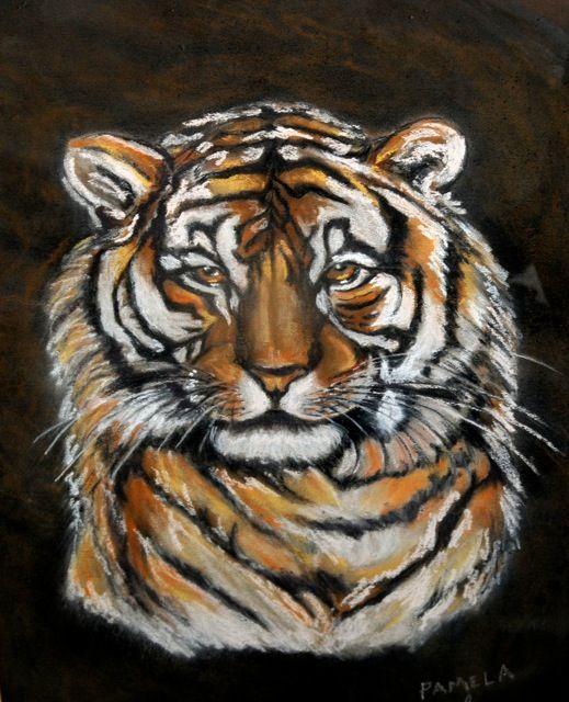 Tiger - Pamelas Art