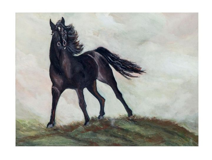Stallion on a hill - Pamelas Art
