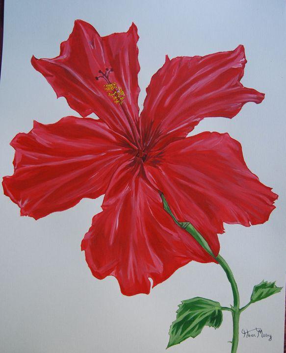 hibiscus - Mistry Visuals