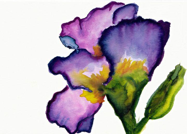 PurpleIris I - Melomi Art