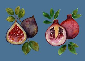Fig and Pomegranate on Blue