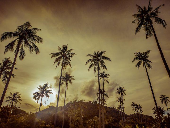 A warm Feeling on Island - Sevi