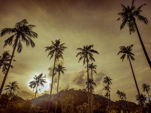 A warm Feeling on Island