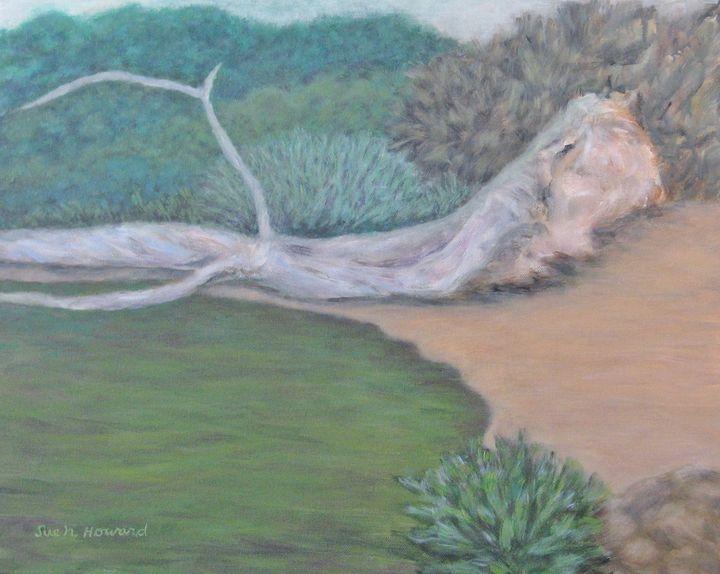Majesty in a Silent Cove - SueNeufarthHowardArt