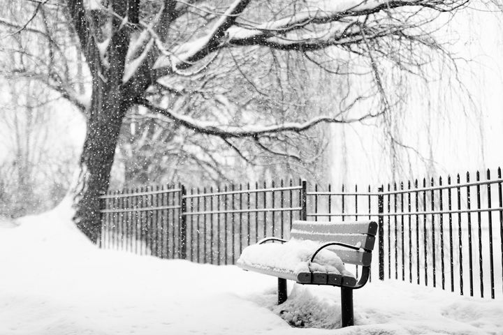 Snow Covered Park Bench - Crystal Madsen Photography