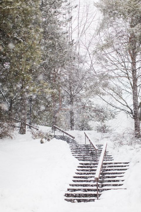 Snowy Park Staircase in the Winter - Crystal Madsen Photography