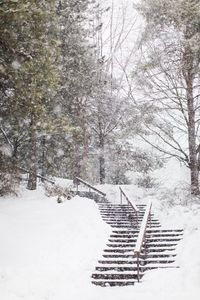 Snowy Park Staircase in the Winter