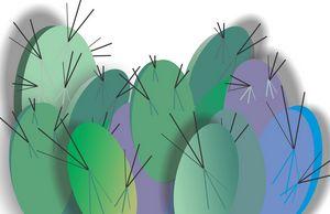 Cacti Gathering