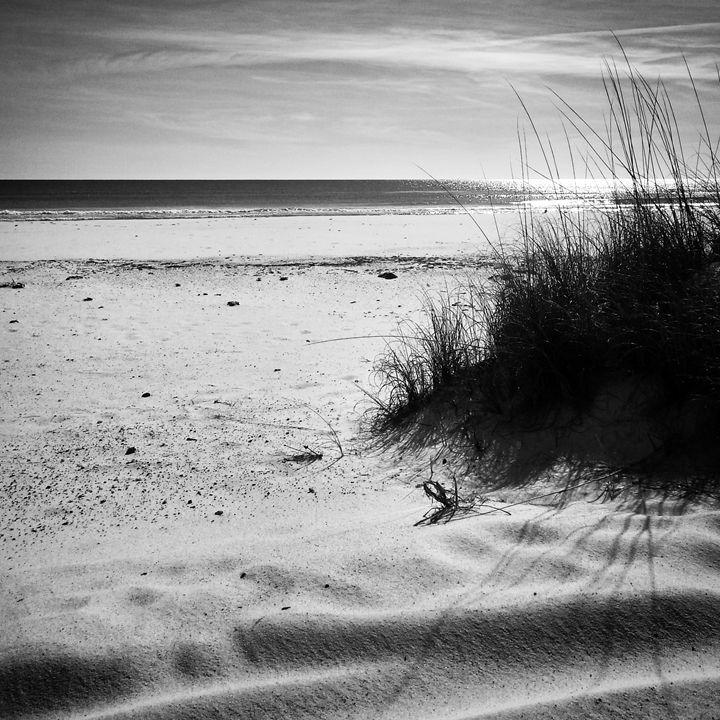 Forgotten Dunes - Aisha Hammett Artistry