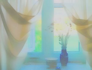 Window curtains spring time - imaginart