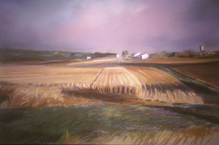 Wheat fields agricultural - imaginart
