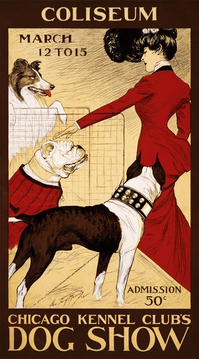 1902 Chicago Kennel Club's Dog Show - imaginart