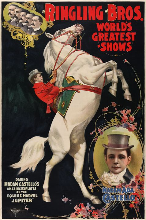 World's Greatest Shows - imaginart