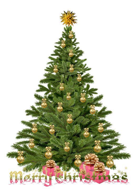 Christmas tree - imaginart