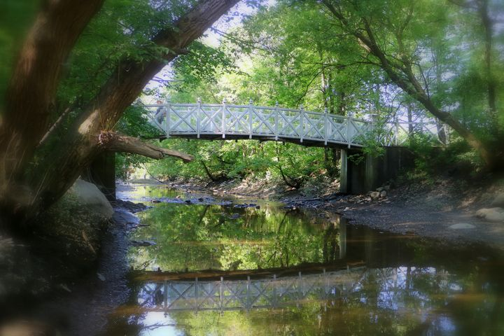 Reflection under the pond bridge - imaginart