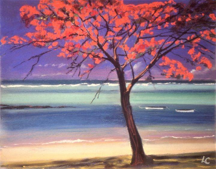 Flamboyant tree - imaginart