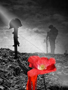 In the field of honor the poppies... - imaginart