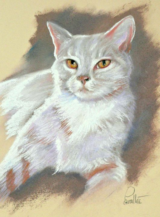 White greyish cat with yellow eyes - imaginart