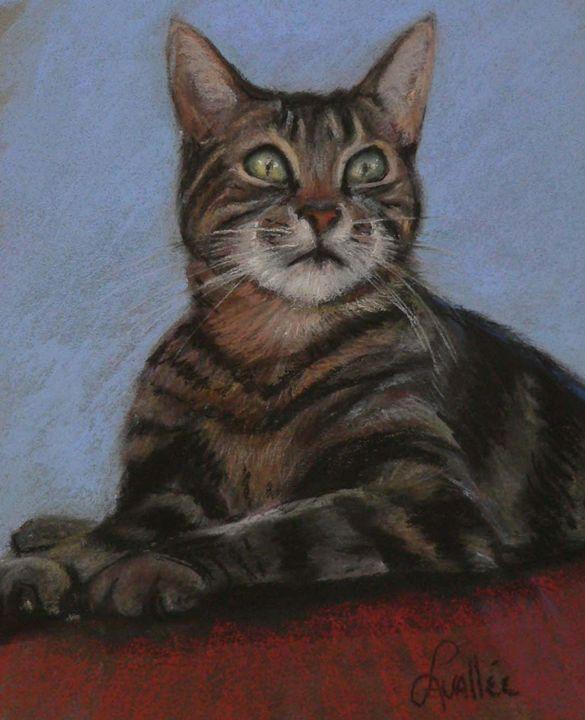 Common cat pastel - imaginart