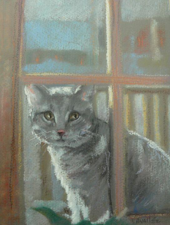 Cat through window pastel - imaginart