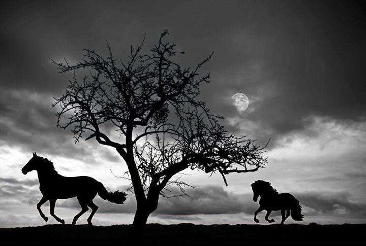 Horses galloping in the moonlight - imaginart