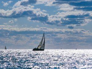 Sunny Sailboat