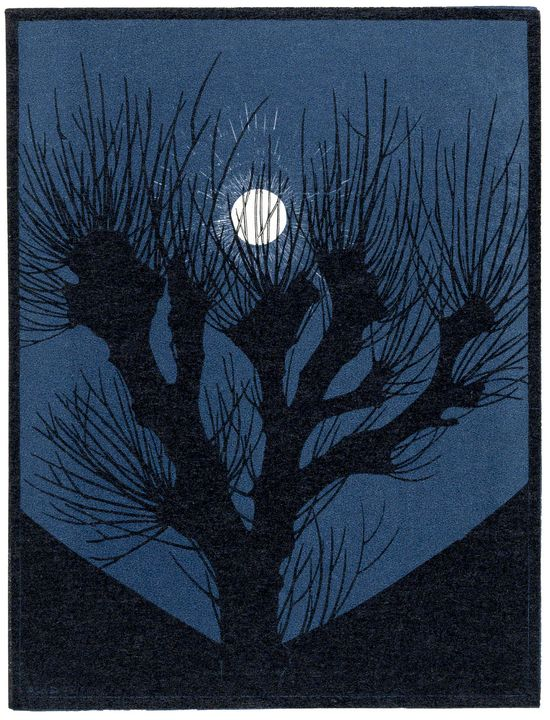 Full Moon Night - Unseen Gallery Prints