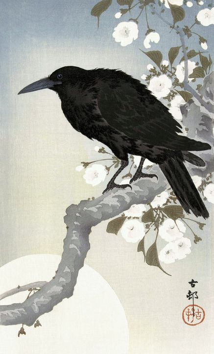 Crow and Moon - Unseen Gallery Prints