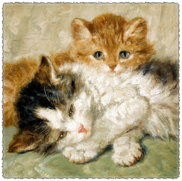 Sleepy kittens - Unseen Gallery Prints