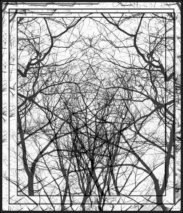 """Spring Trees"" - Robert Bard Fine Art"