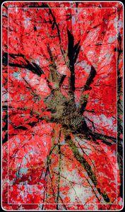 """""""Deep Autumn Red"""""""