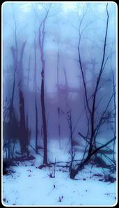 """""""Mount Tom Mist"""""""