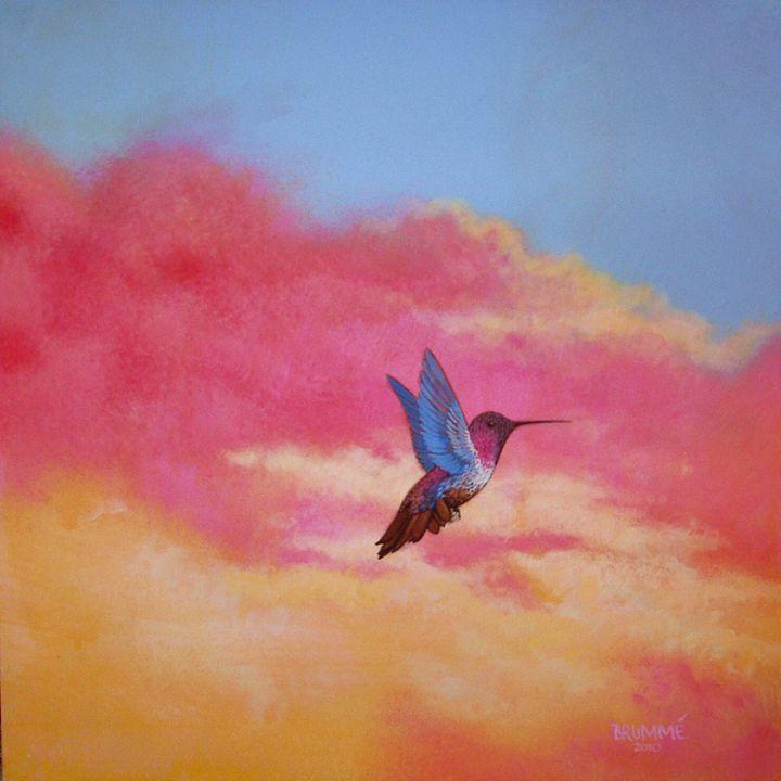 The Red Belly Humming Bird - Steve Brumme