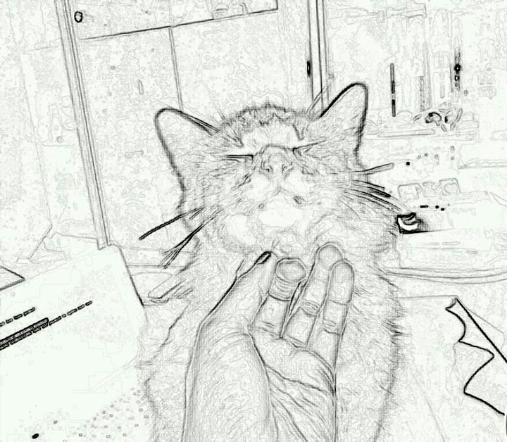 Hello Kitty JRobin -  Jacinta.robin