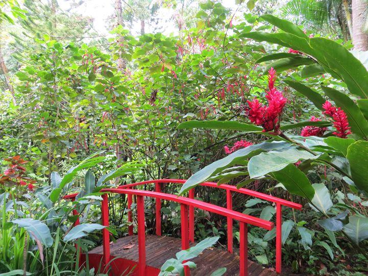 Red Bridge - Teresa Wing