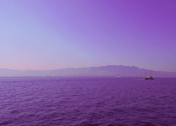 Purple sea - Photography