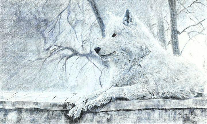 White Wolf - Ara's art