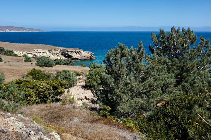 Santa Rosa Channel Island - Zahnscapes
