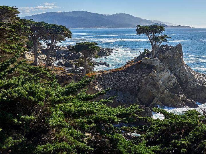 Monterey - Zahnscapes